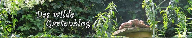 Das naturnahe Gartenblog